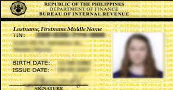 business tax id number application