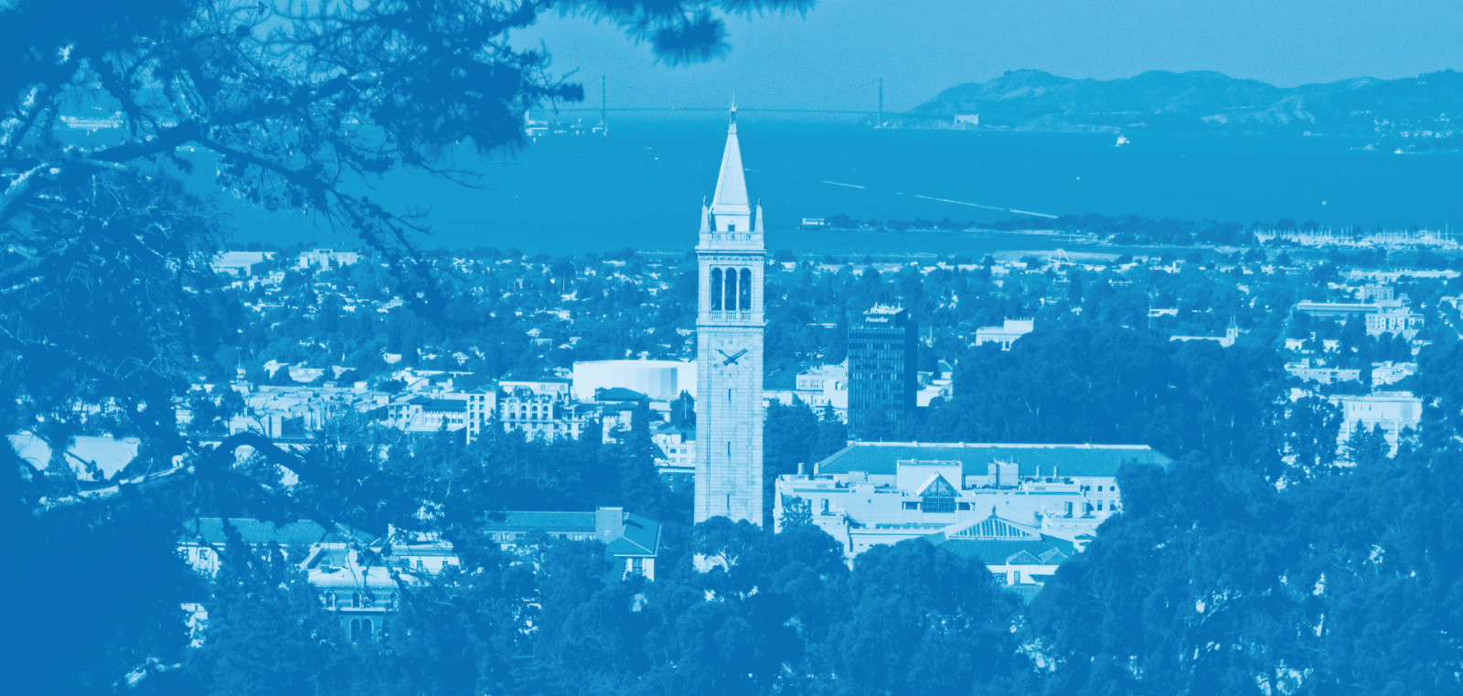 university of california berkeley graduate application